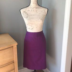 Beautiful Purple Banana Republic Skirt-Size 6